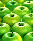 green apples...fetch the sears catalog, maw