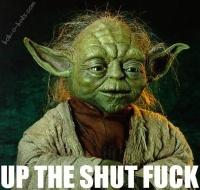 advice from master yoda