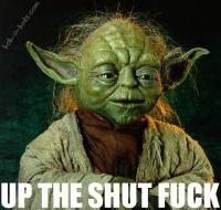 advice from master yoda